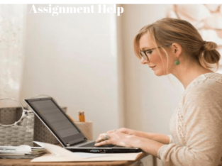 Are you looking for an Assignment expert South Africa? Your Search Ends Here!