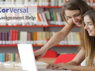 Get the Best assignment writing help