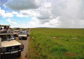 The Best African Safari Tour in Kenya