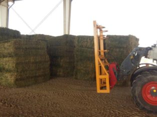 Alfalfa/Lucerne Hay Free State