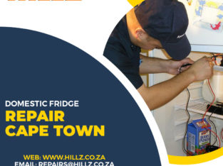 Domestic Fridge Repair – Why You Need it?