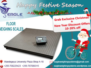Stainless Steel Digital Electronic scales