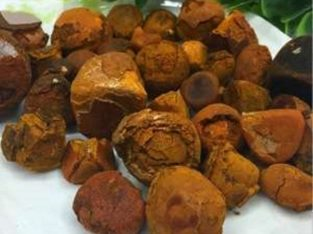 Cow/Ox/Cattle Gallstones for Sale / Ox gallstones and Cow gallsto