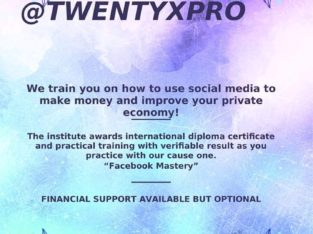 Become a social media marketing expert and earn in Euro