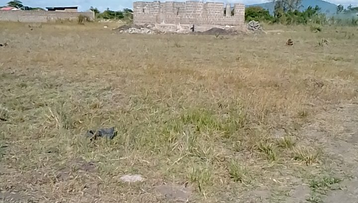 Ideal and Affordable plots in Juja Farm