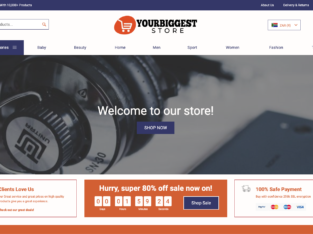 Online Store in 24HOURS!YourBiggestStore | 10,000+ Products