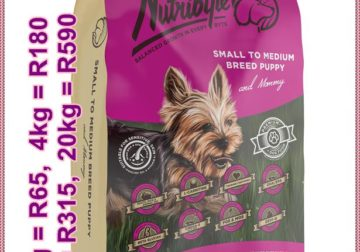Affordable Premium Pet Nutrition