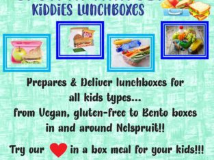 Delivery Lunchboxes