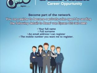 I am looking for online car sales agents! Free to join!!!