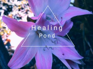 Reiki healing, massage,energy balance and release