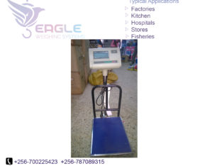 New model electronic scale